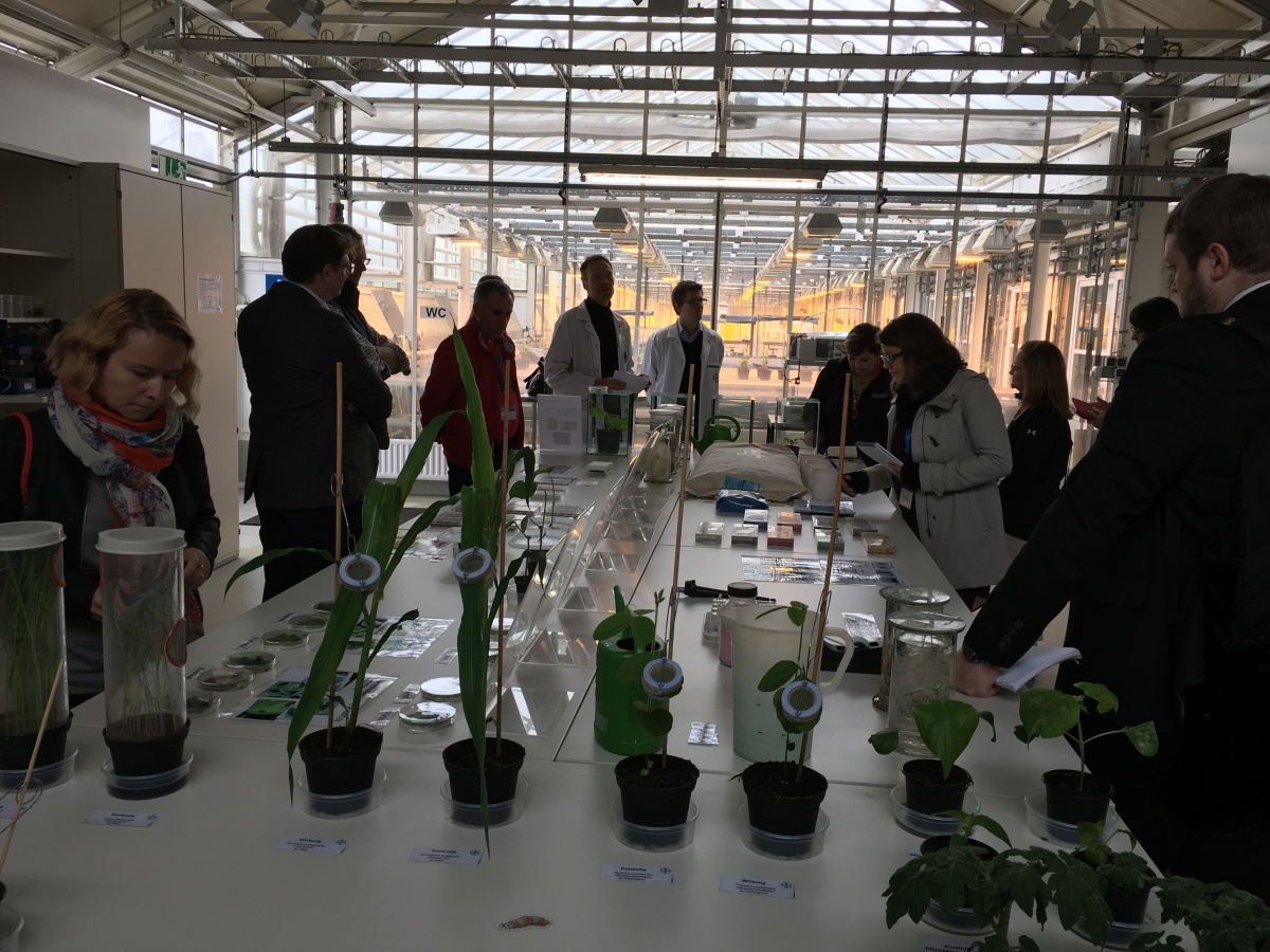 scientists in Germany greenhouse