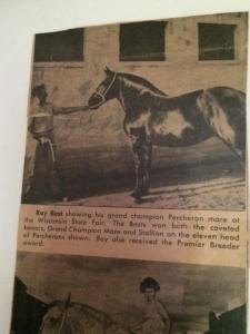 man and horse newspaper picture