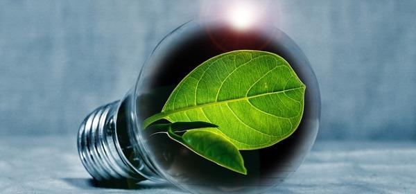 earth planet health