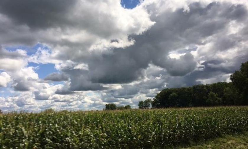farm field clouds