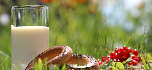 gluten dairy