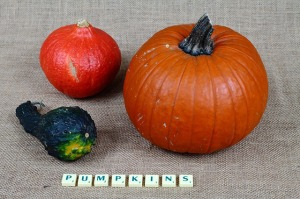 food words gourd squash